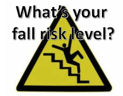 fall risk level for elderly